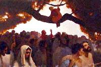 http://www.catholicireland.net/wp-content/uploads/1999/11/zacchaeus.jpg