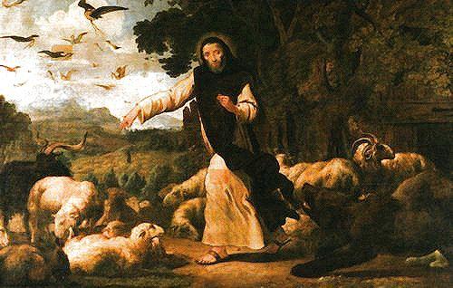 cel as Shepherd