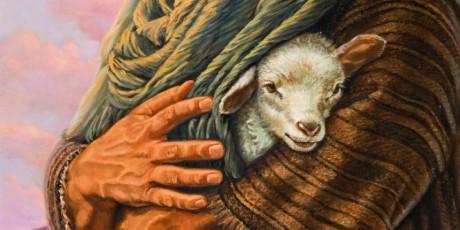 safe lamb