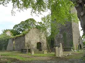 Birr Old Churchyard, believed to be the site of the monastery founded by St Brendan