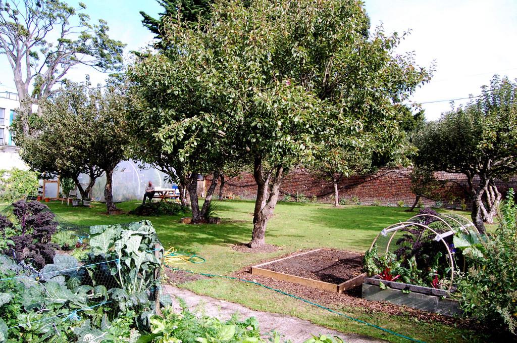 Heritage Garden sept 13 025