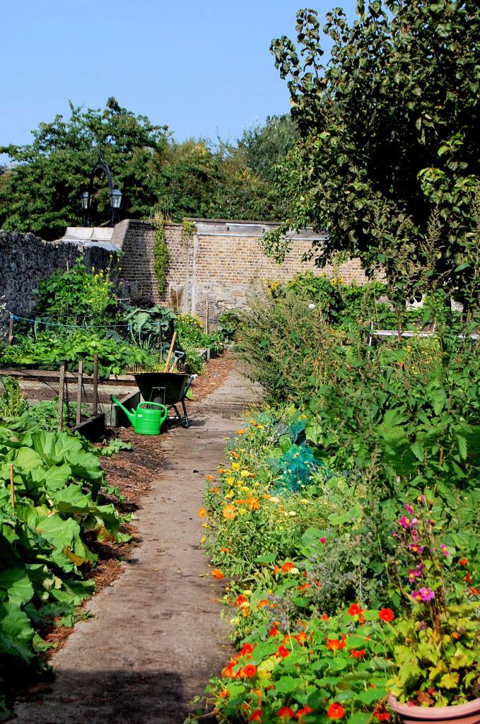 Heritage Garden sept 13 028