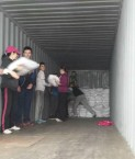 School children fill 40 foot container of aid destined for Cebu from Déise Philippine appeal.