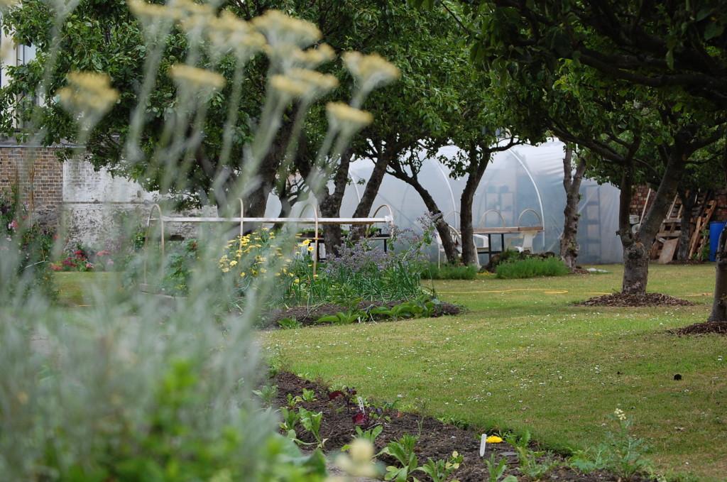 h garden 30-6-13 021