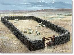 gate o sheepold