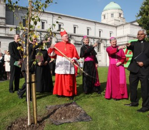 Papal Nuncio Archbishop Charles Brown, Bishop of Meath Michael Smith pointing out something to Cardinal Timothy Dolan as he plants a birch tree before the mass in Mullingar Cathedral. Pic John McElroy.