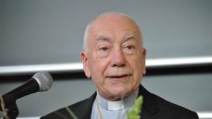 Cardinal Francesco Coccopalmiero