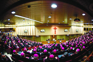Extraordinary Synod