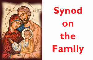 synod-on-the-family-image-2