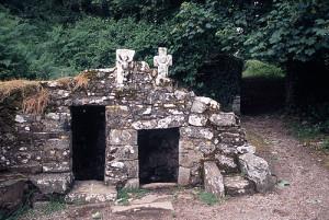 Pilgrim Paths St Declan's Well