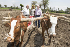 IFA President Eddie Downey and Joseph O'Dwyer, Gorta Self Help Africa President pictured with 21-year old Ethiopian farmer Surur Jemel
