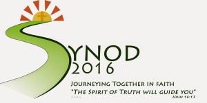 Limerick Synod-Logo