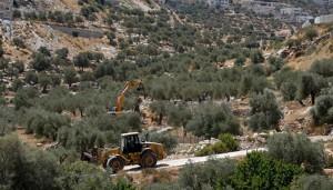 JCBs dig land on West Bank