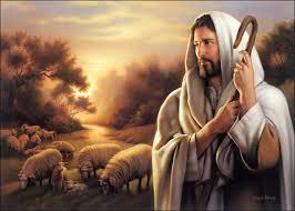 Sunday Homily - Catholicireland netCatholicireland net