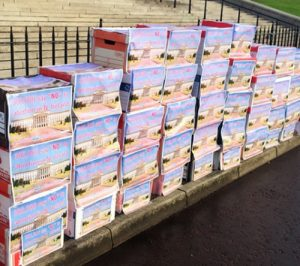 Some of 57 boxes containing 300K signatures presented to NI Assembly.